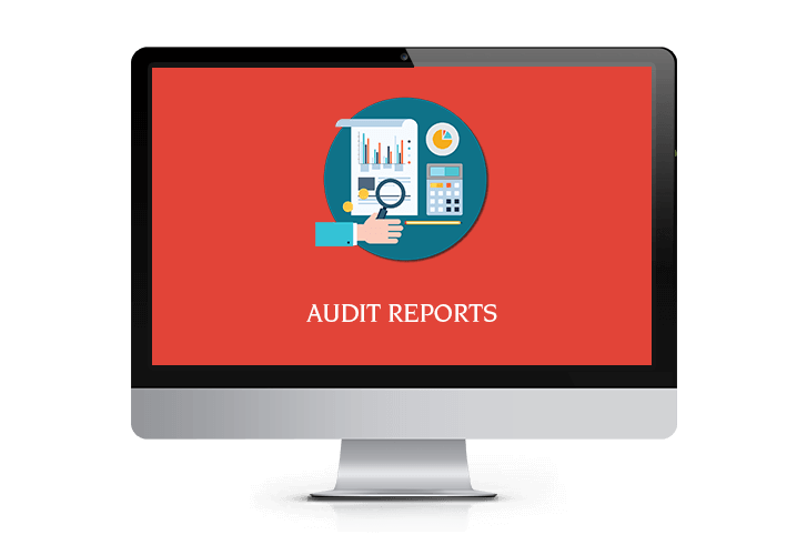 Audit Report- Mentor POS